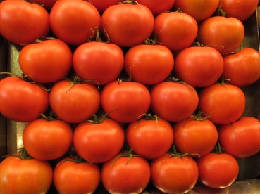 El tomate cuando madura libera glutamato