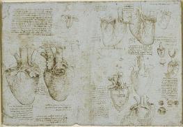 Leonardo-da-Vinci-Corazon